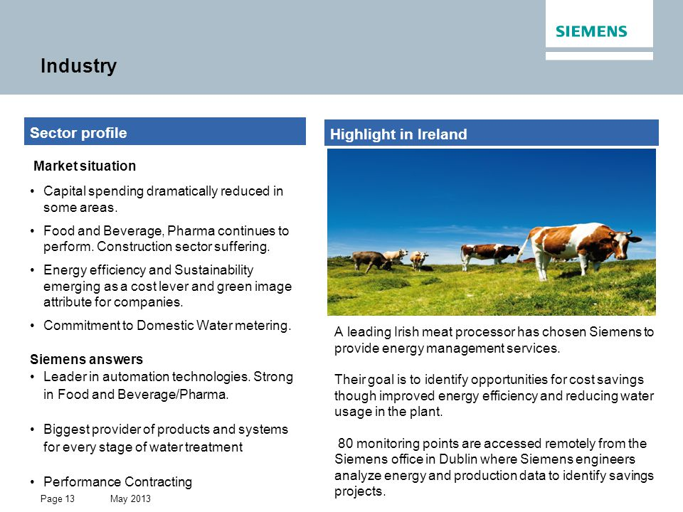 May 2013 Restricted © Siemens AG 2013 All rights reserved. Page 13 Industry Highlight in Ireland Sector profile Market situation Capital spending dram