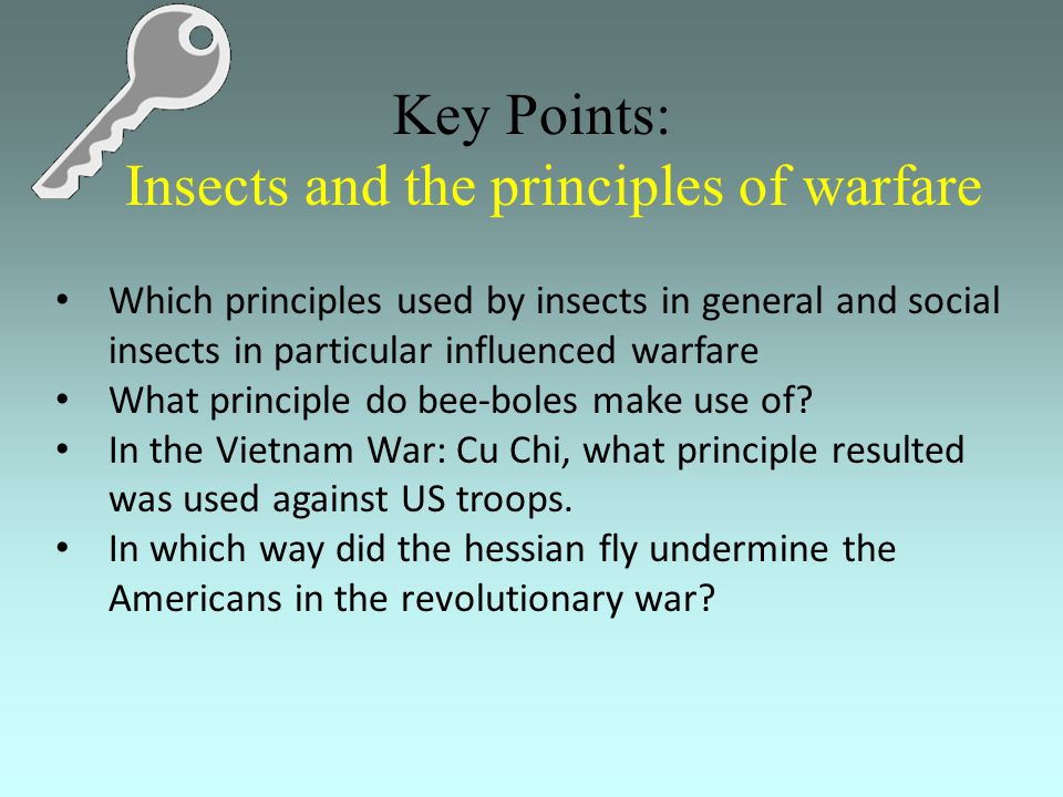 Key Points: Insects and the principles of warfare Which principles used by insects in general and social insects in particular influenced warfare What principle do bee-boles make use of.