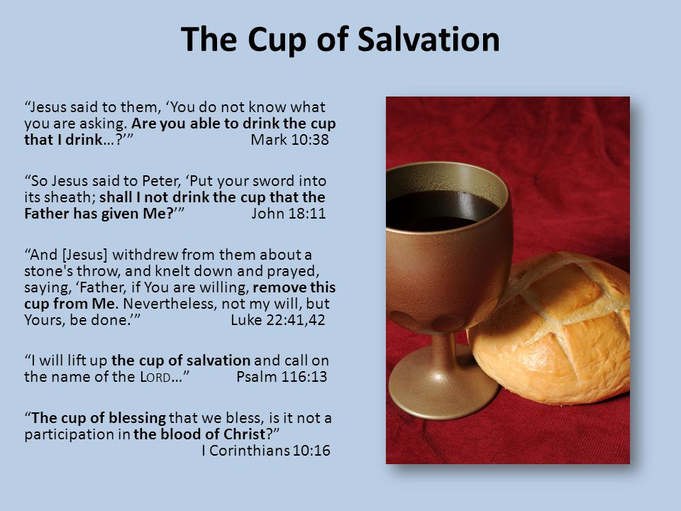 The Cup of Salvation Jesus said to them, 'You do not know what you are asking.