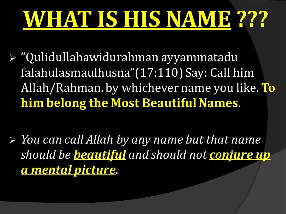 "WHAT IS HIS NAME ???  ""Qulidullahawidurahman ayyammatadu falahulasmaulhusna""(17:110) Say: Call him Allah/Rahman. by whichever name you like. To him b"