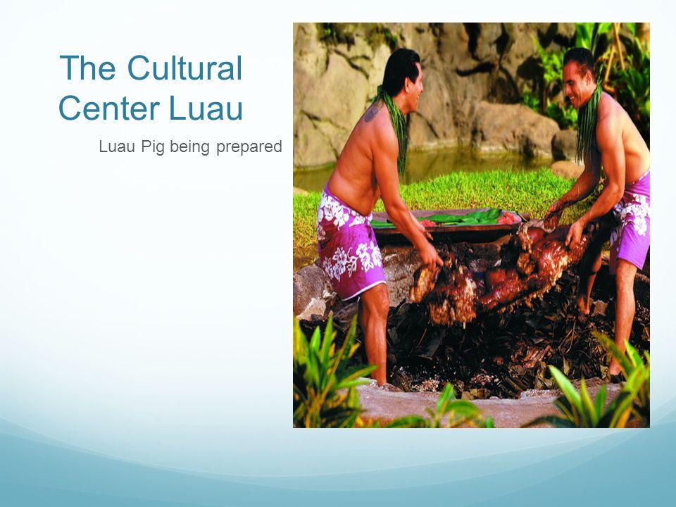 The Cultural Center Luau Luau Pig being prepared