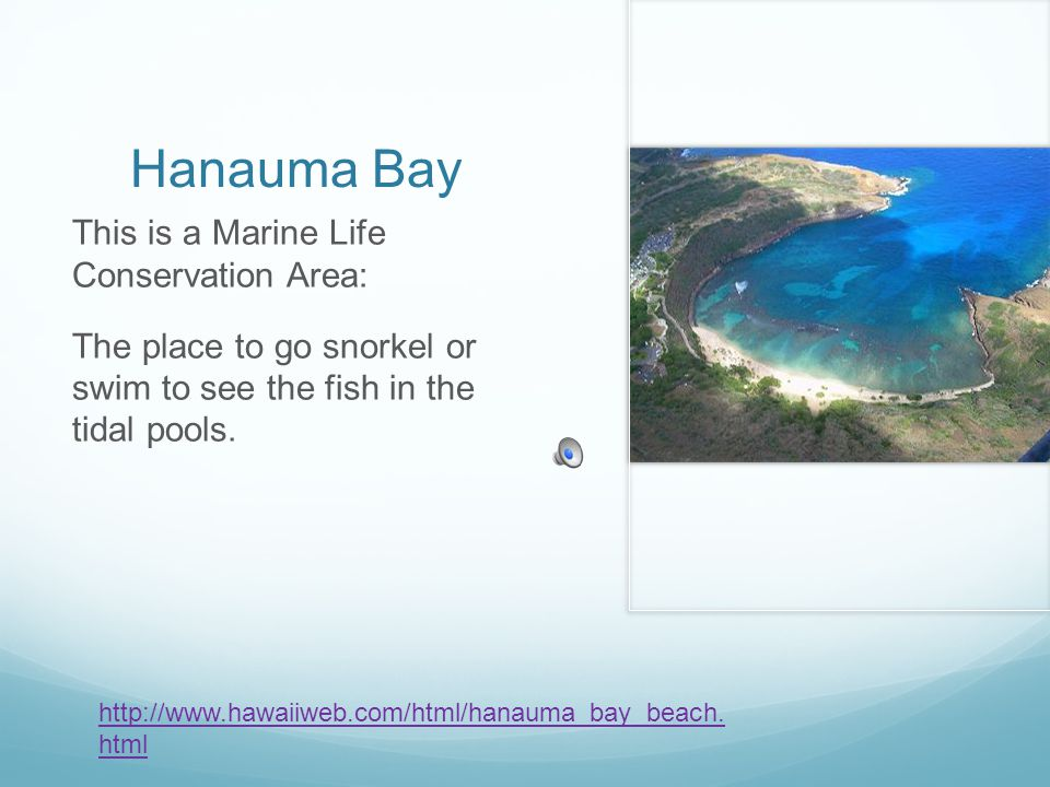 Hanauma Bay This is a Marine Life Conservation Area: The place to go snorkel or swim to see the fish in the tidal pools.