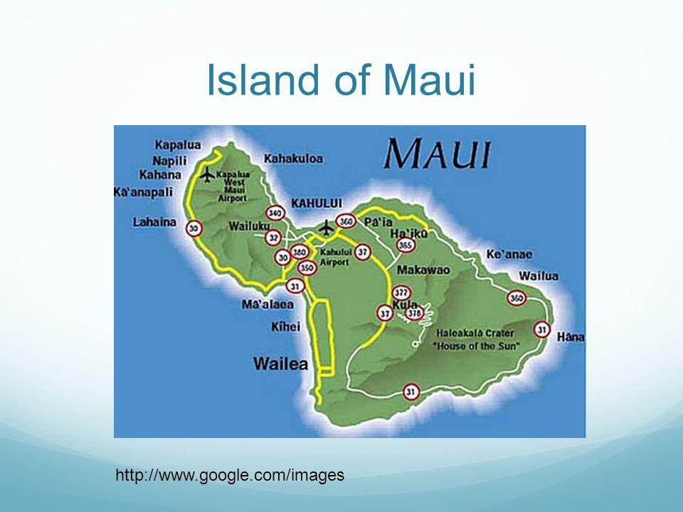Island of Maui http://www.google.com/images