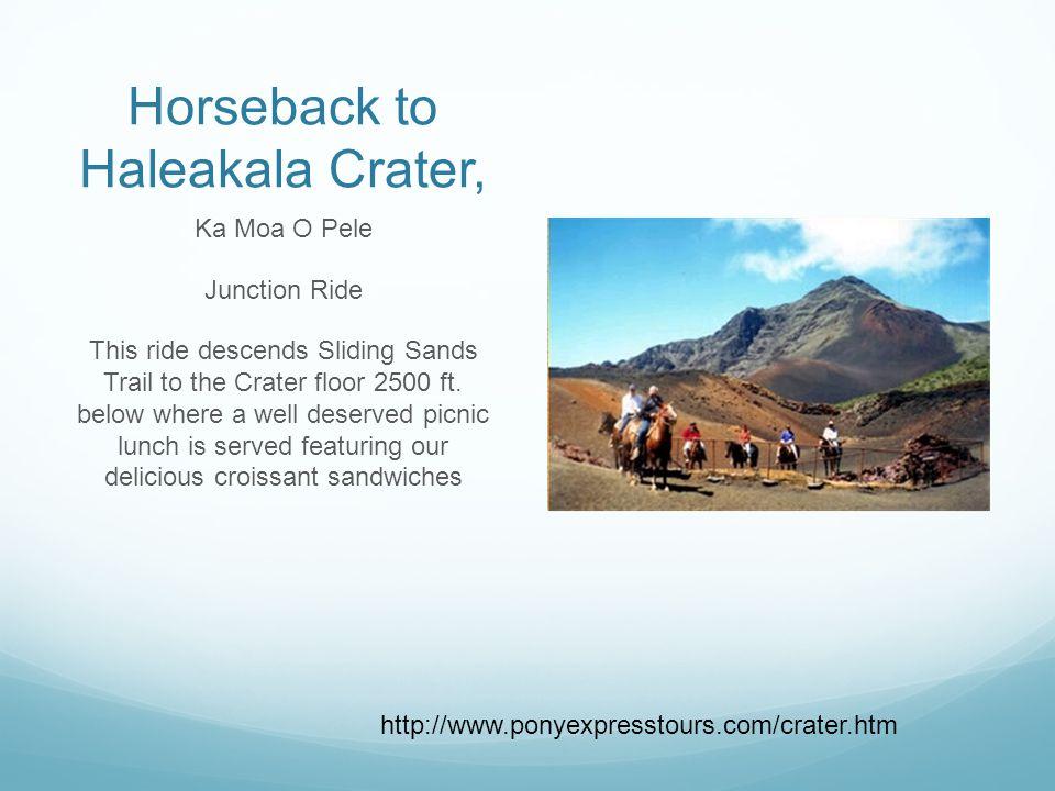 Horseback to Haleakala Crater, Ka Moa O Pele Junction Ride This ride descends Sliding Sands Trail to the Crater floor 2500 ft.