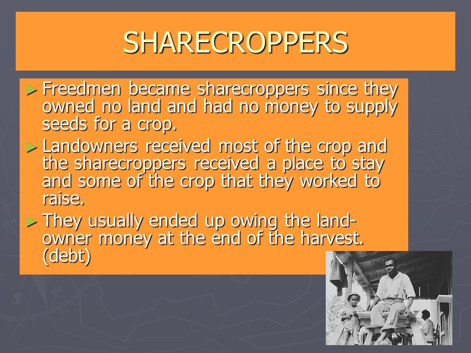 SHARECROPPERS ► Freedmen became sharecroppers since they owned no land and had no money to supply seeds for a crop. ► Landowners received most of the
