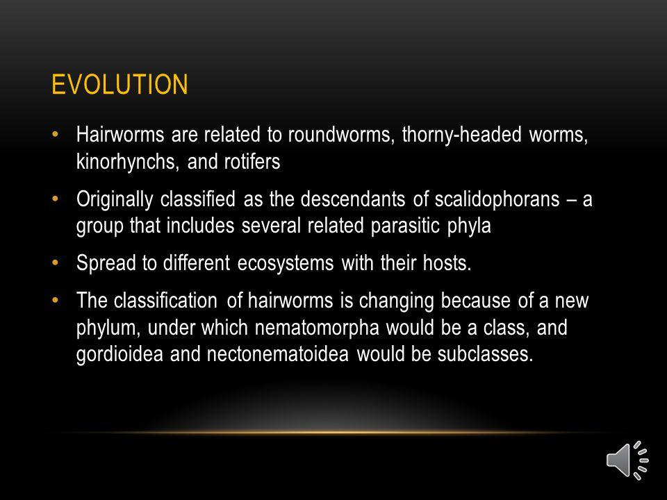 SOURCES Bolek, M.,.E. A. (2011, August). Hairworm biodiversity survey.
