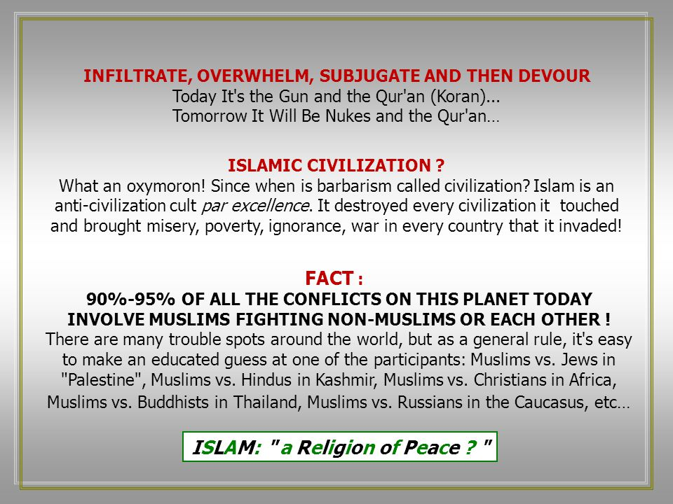 INFILTRATE, OVERWHELM, SUBJUGATE AND THEN DEVOUR Today It s the Gun and the Qur an (Koran)...