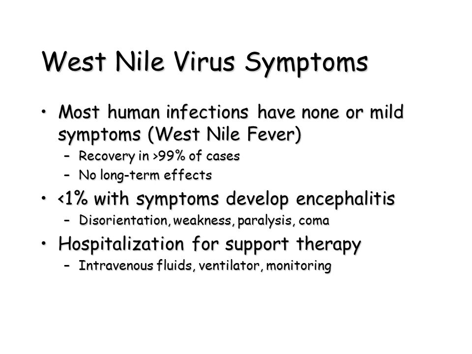 West Nile Virus Symptoms Most human infections have none or mild symptoms (West Nile Fever)Most human infections have none or mild symptoms (West Nile Fever) –Recovery in >99% of cases –No long-term effects <1% with symptoms develop encephalitis<1% with symptoms develop encephalitis –Disorientation, weakness, paralysis, coma Hospitalization for support therapyHospitalization for support therapy –Intravenous fluids, ventilator, monitoring