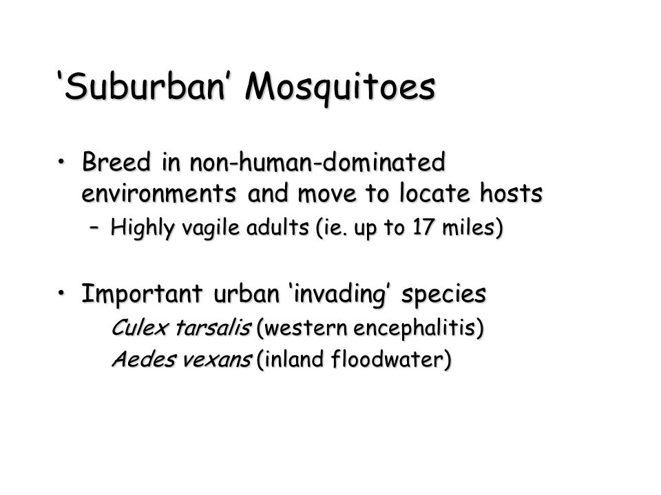 'Suburban' Mosquitoes Breed in non-human-dominated environments and move to locate hostsBreed in non-human-dominated environments and move to locate hosts –Highly vagile adults (ie.