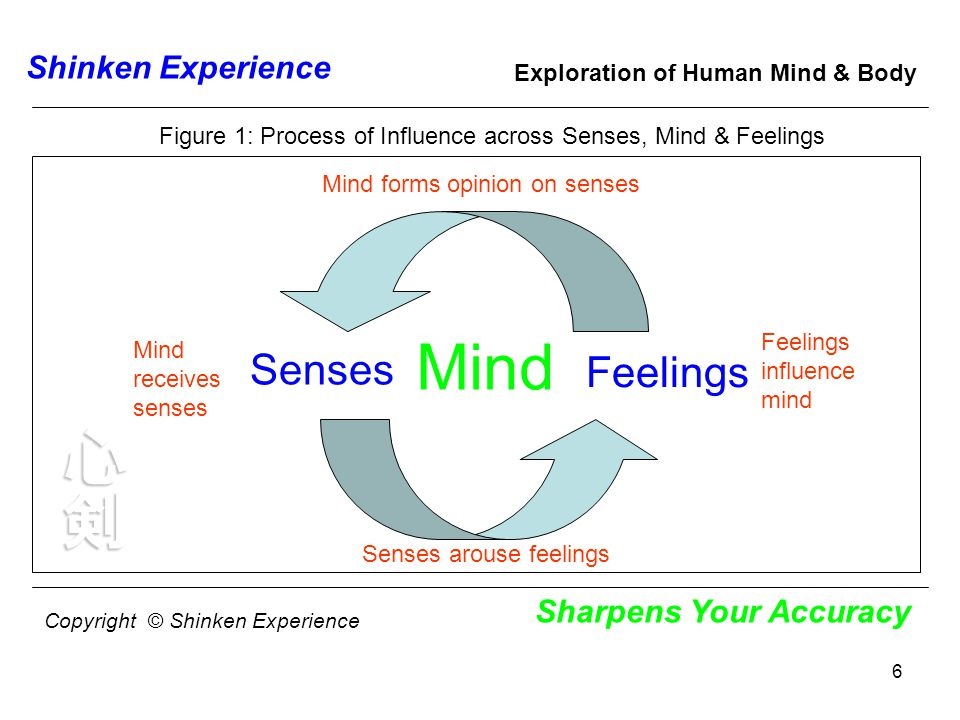 6 Shinken Experience Sharpens Your Accuracy Exploration of Human Mind & Body Mind Feelings Senses Mind forms opinion on senses Mind receives senses Senses arouse feelings Figure 1: Process of Influence across Senses, Mind & Feelings Copyright © Shinken Experience Feelings influence mind
