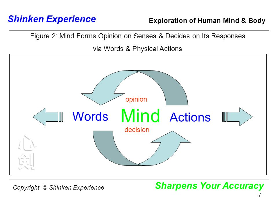 7 Shinken Experience Sharpens Your Accuracy Exploration of Human Mind & Body Mind Actions Words Figure 2: Mind Forms Opinion on Senses & Decides on Its Responses via Words & Physical Actions opinion decision Copyright © Shinken Experience