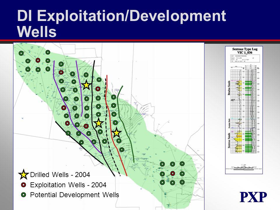 DI Exploitation/Development Wells Drilled Wells - 2004 Exploitation Wells - 2004 Potential Development Wells