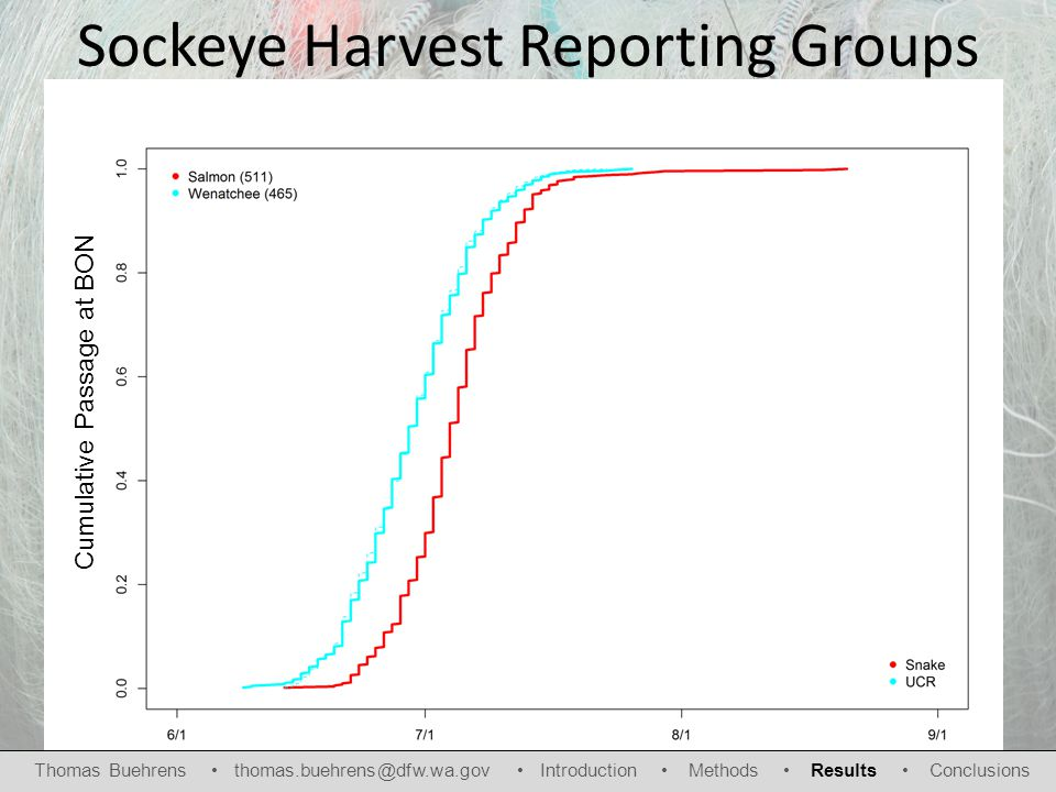 Sockeye Harvest Reporting Groups Cumulative Passage at BON Thomas Buehrens thomas.buehrens@dfw.wa.gov Introduction Methods Results Conclusions