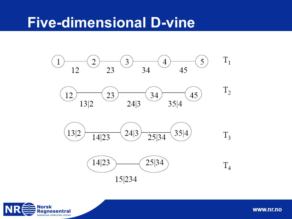 www.nr.no Five-dimensional D-vine