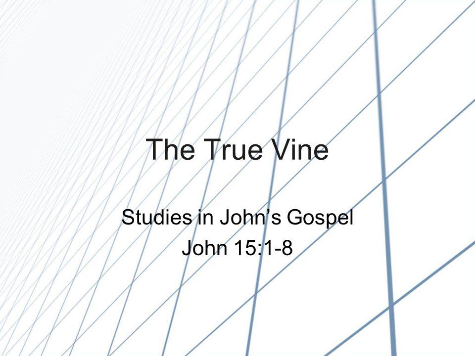 The True Vine Studies in John's Gospel John 15:1-8