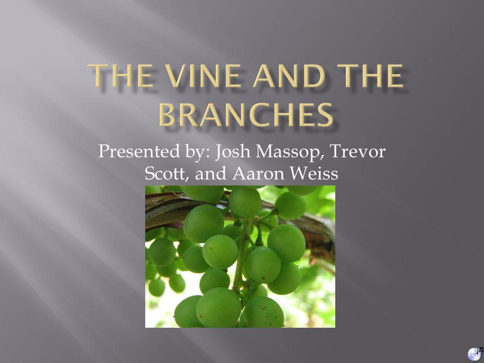 Presented by: Josh Massop, Trevor Scott, and Aaron Weiss