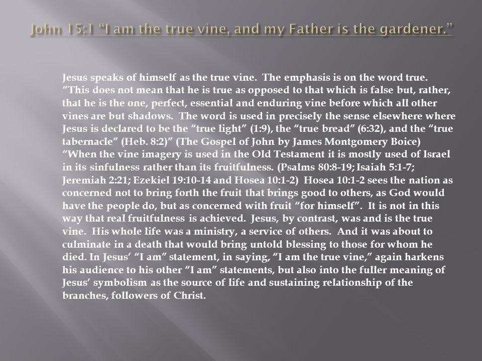 Jesus speaks of himself as the true vine. The emphasis is on the word true.