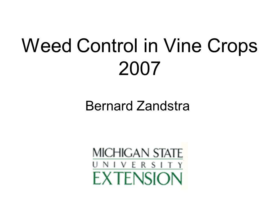 Weed Control in Vine Crops 2007 Bernard Zandstra