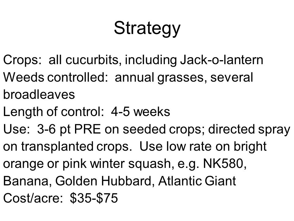 Strategy Crops: all cucurbits, including Jack-o-lantern Weeds controlled: annual grasses, several broadleaves Length of control: 4-5 weeks Use: 3-6 pt PRE on seeded crops; directed spray on transplanted crops.