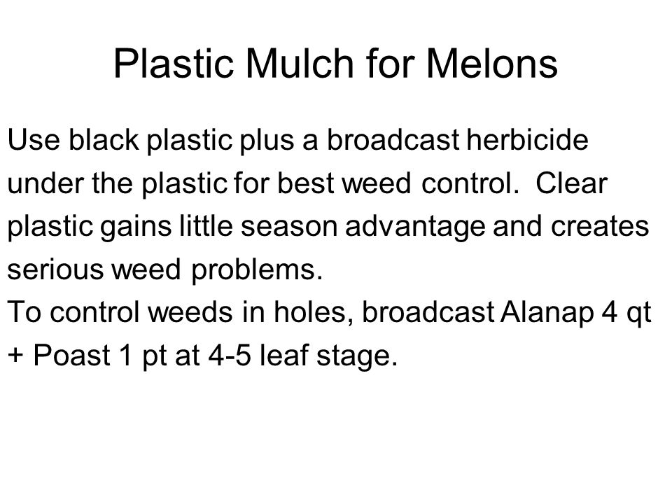 Plastic Mulch for Melons Use black plastic plus a broadcast herbicide under the plastic for best weed control. Clear plastic gains little season advan