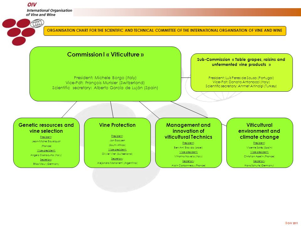 OIV 2011 Commission I « Viticulture » President: Michele Borgo (Italy) Vice-Pdt: François Murisier (Switzerland) Scientific secretary: Alberto Garcí