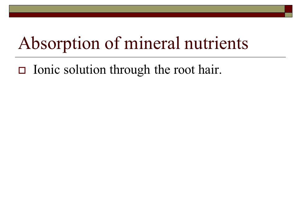 Absorption of mineral nutrients  Ionic solution through the root hair.