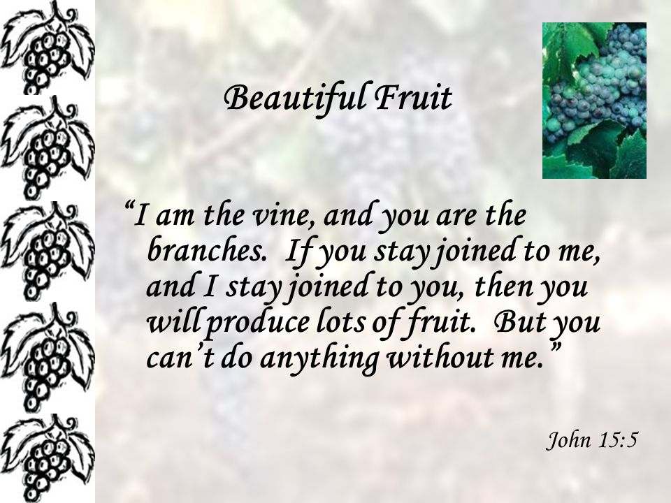 Beautiful Fruit I am the vine, and you are the branches.