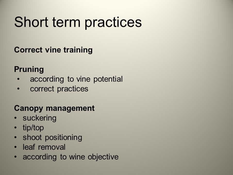 Short term practices Correct vine training Pruning according to vine potential correct practices Canopy management suckering tip/top shoot positioning leaf removal according to wine objective
