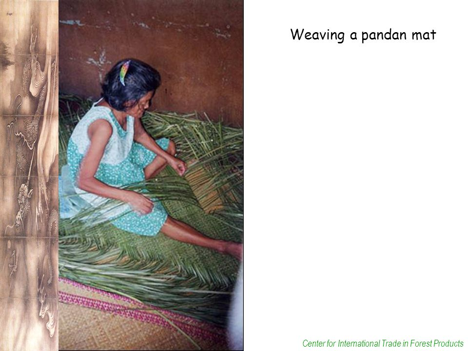 Center for International Trade in Forest Products Weaving a pandan mat