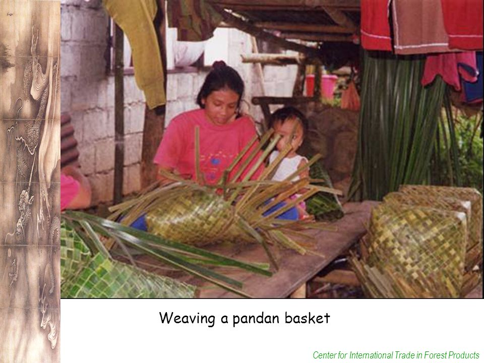Center for International Trade in Forest Products Weaving a pandan basket