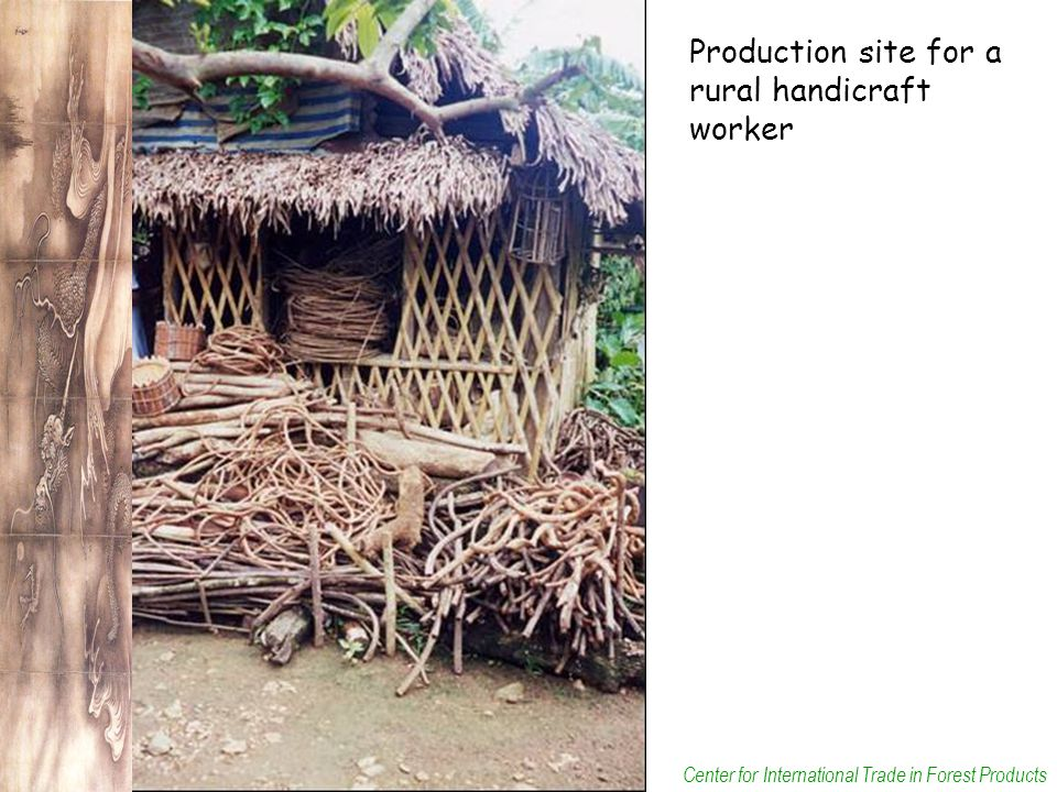 Center for International Trade in Forest Products Production site for a rural handicraft worker