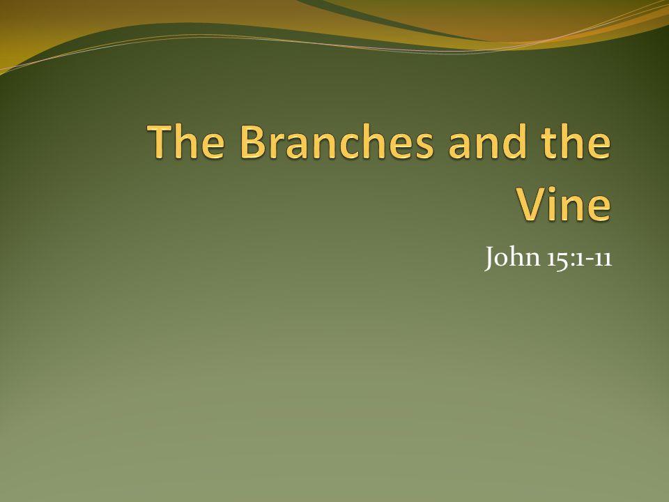 John 15:1-11