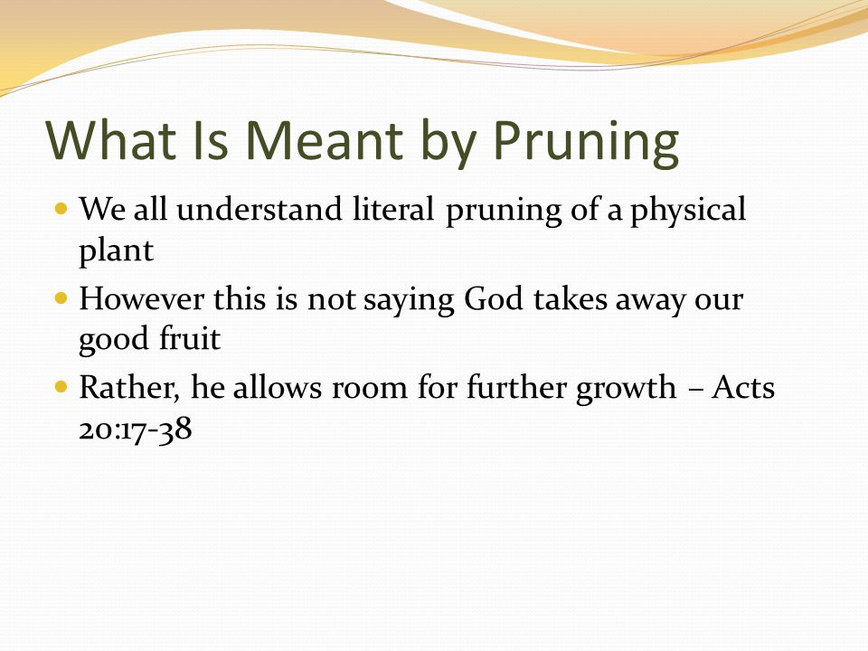 What Is Meant by Pruning We all understand literal pruning of a physical plant However this is not saying God takes away our good fruit Rather, he all