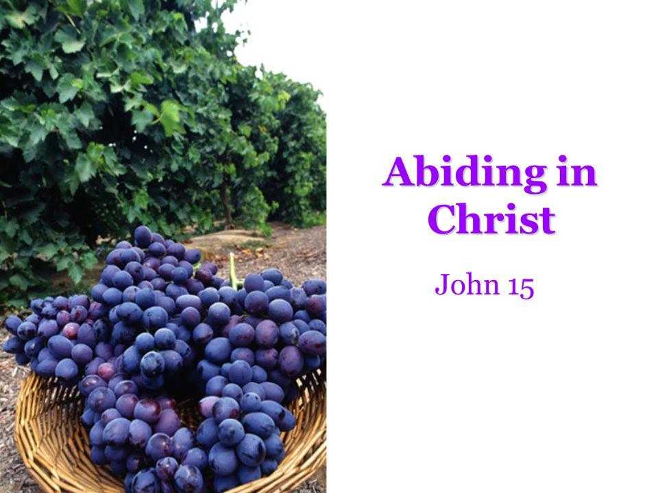 The Blessings of Abiding FruitfulnessFruitfulness –Vs.