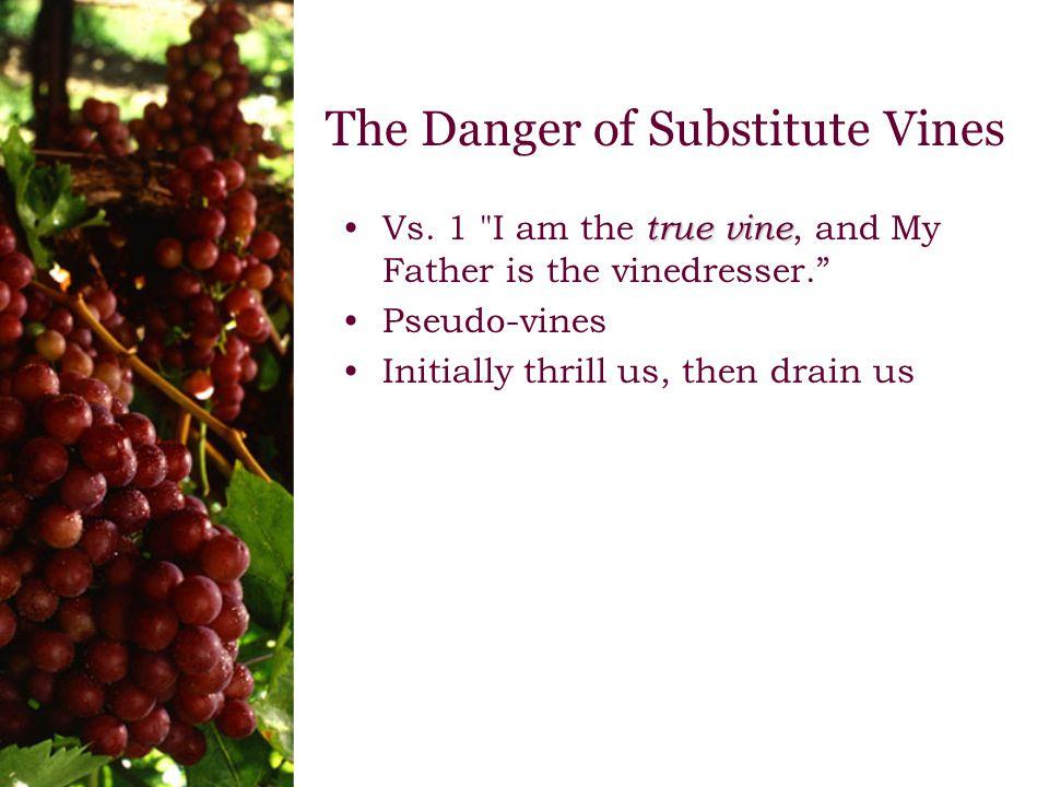 The Danger of Substitute Vines true vineVs.