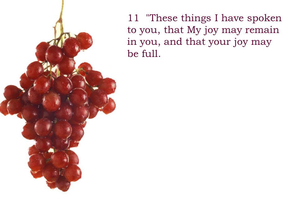 11 These things I have spoken to you, that My joy may remain in you, and that your joy may be full.