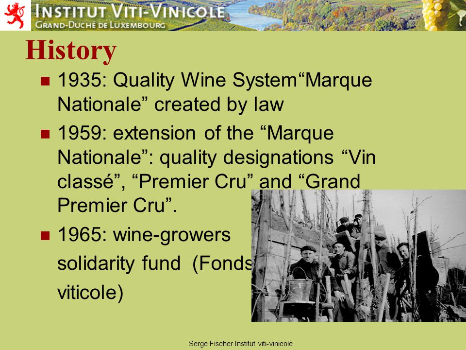 Serge Fischer Institut viti-vinicole History 1935: Quality Wine System Marque Nationale created by law 1959: extension of the Marque Nationale : quality designations Vin classé , Premier Cru and Grand Premier Cru .