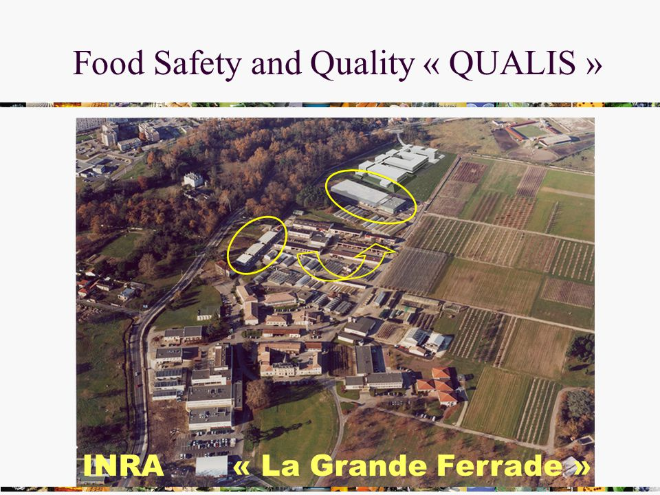 Food Safety and Quality « QUALIS » INRA « La Grande Ferrade »