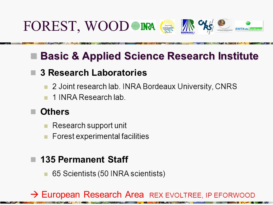 FOREST, WOOD Basic & Applied Science Research Institute Basic & Applied Science Research Institute 3 Research Laboratories 2 Joint research lab.