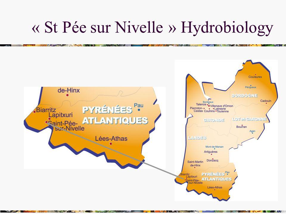 « St Pée sur Nivelle » Hydrobiology
