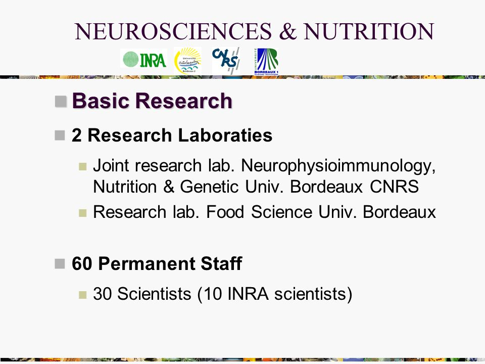 NEUROSCIENCES & NUTRITION Basic Research Basic Research 2 Research Laboraties Joint research lab.