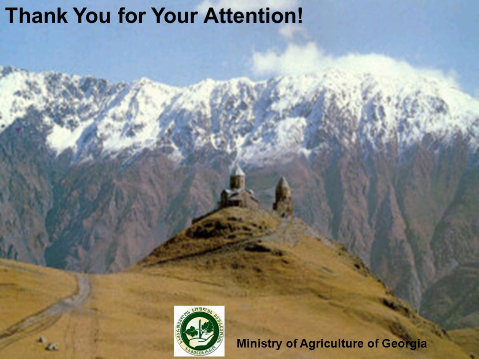 Thank You for Your Attention! Ministry of Agriculture of Georgia