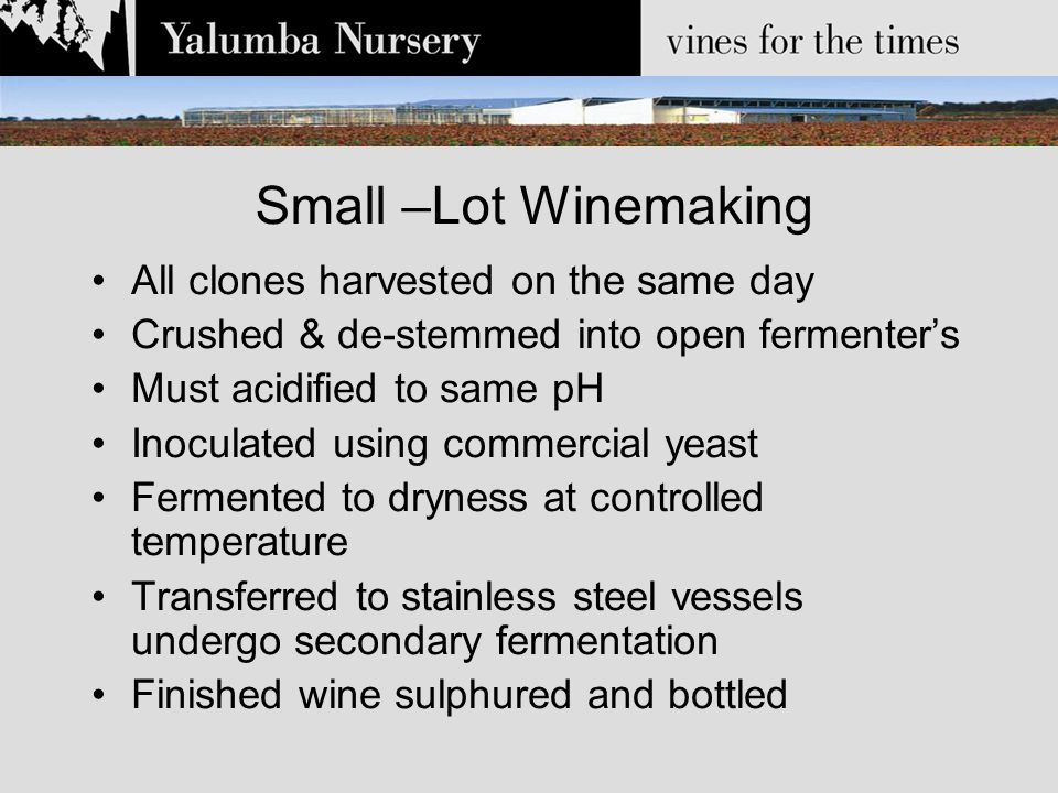 Small –Lot Winemaking All clones harvested on the same day Crushed & de-stemmed into open fermenter's Must acidified to same pH Inoculated using commercial yeast Fermented to dryness at controlled temperature Transferred to stainless steel vessels undergo secondary fermentation Finished wine sulphured and bottled