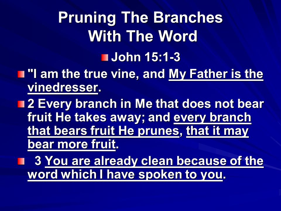 Pruning The Branches With The Word John 15:1-3