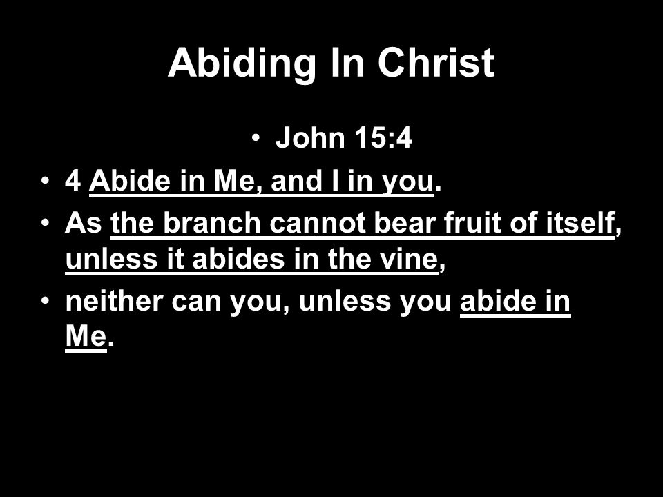 Pruning The Branches With The Word John 15:1-3 I am the true vine, and My Father is the vinedresser.