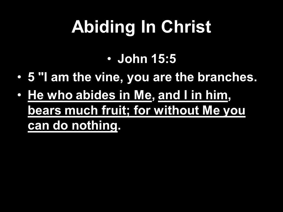 Abiding In Christ John 15:5 5