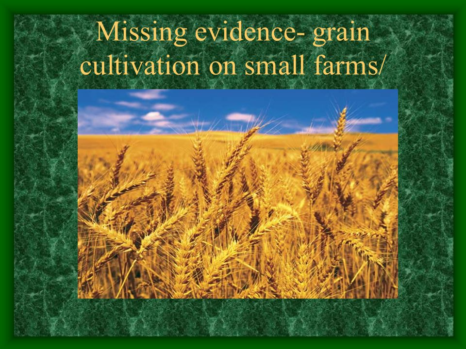 Missing evidence- grain cultivation on small farms/