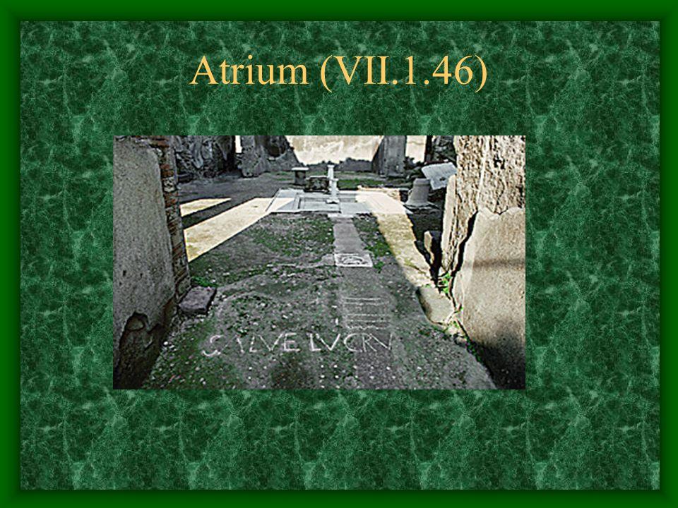 Atrium (VII.1.46)
