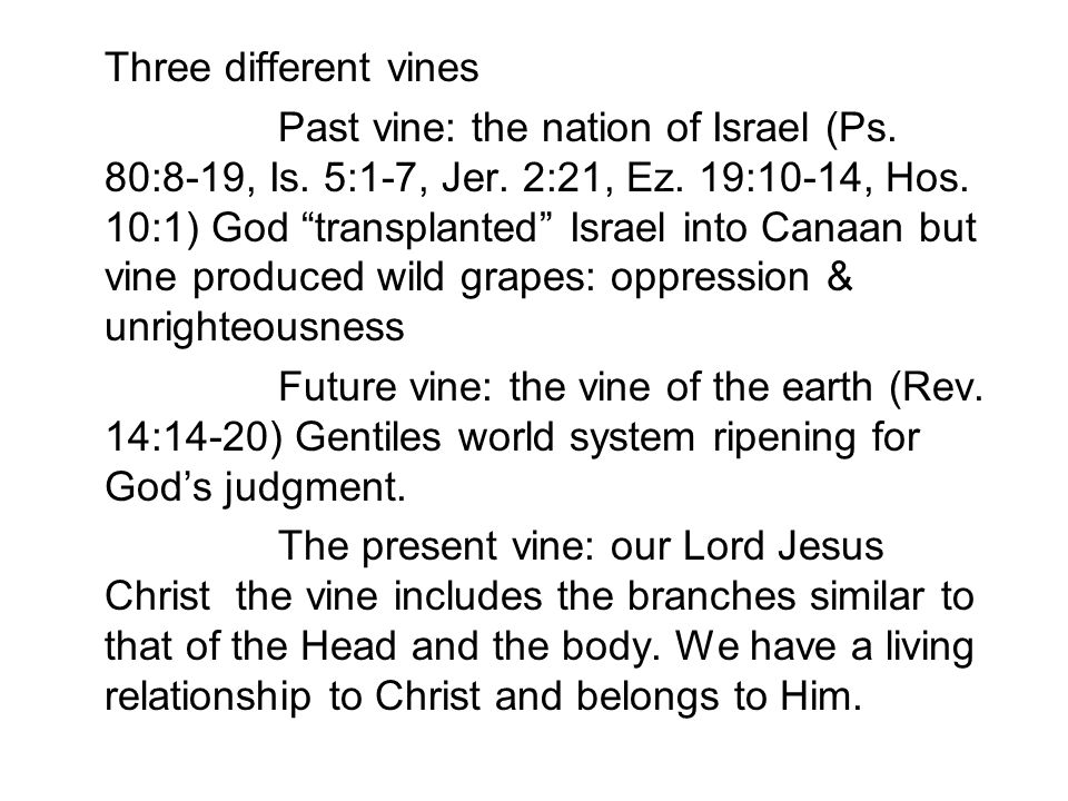 Three different vines Past vine: the nation of Israel (Ps.
