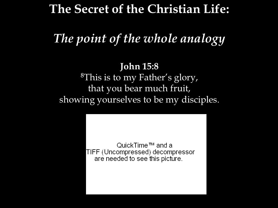 The Secret of the Christian Life: The point of the whole analogy John 15:8 8 This is to my Father's glory, that you bear much fruit, showing yourselves to be my disciples.